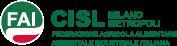 Logo_faicislmilanometropoli